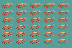 Red crabs pattern on turquoise background Stock Image
