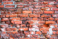 Red cracked old brick wall texture background. Royalty Free Stock Images