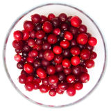 Red cranberries in bowl on white Stock Photo