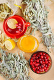 Red cranberries,  honey, fruit tea cup and herbs Stock Photography