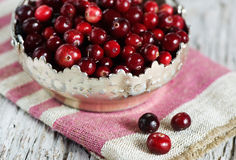 Red cranberry Royalty Free Stock Photo