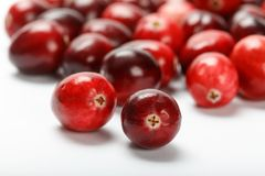 Red cranberry fruit Stock Photo