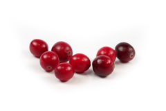 Red cranberry on white Stock Photo