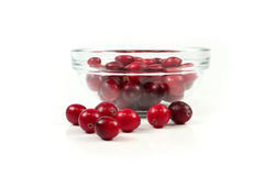 Red cranberry on white Stock Photos
