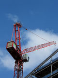 Red crane Stock Image