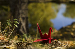 Red crane and water reflections Stock Photo