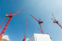 Red cranes Royalty Free Stock Image