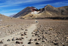 Red crater, New Zealand Stock Images