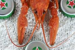 Red crayfish macro Stock Photo