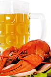 Red crayfish and mug of beer. Royalty Free Stock Photography