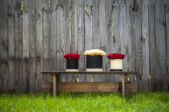Red and creamy roses in gift boxes on the garden's bench. Stock Photos