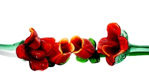 Red cristal roses Stock Photography