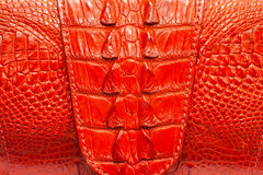 Red crocodile Leather background texture Royalty Free Stock Images