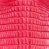 Red crocodile skin texture Stock Photo