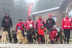 Red Cross search and rescue team Stock Image