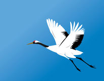 Red-crowned crane fly vector Royalty Free Stock Photo