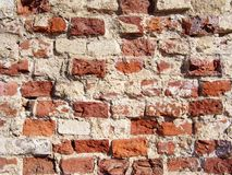 Red Crushed Bricks. Photo of Crushed and dirty red bricks. Can be used like background stock photos