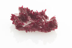 Red crystals isolated Royalty Free Stock Photo