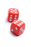 Red cubes for poker on white background Royalty Free Stock Images