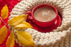 A red cup of cocoa, a beige knitted scarf and yellow autumn leaves  placed n a red surface Stock Image