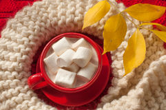 A red cup of cocoa with marshmallows and a beige knitted scarf on a red surface Stock Photo