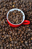 Red cup full of coffee beans Stock Images