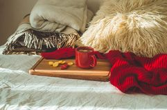Red cup of tea with kumquat and two hearts cookies on a white bed. Cozy Home. Valentines day concept.  royalty free stock image