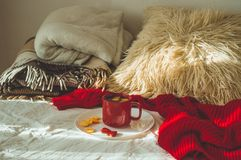 Red cup of tea with kumquat and two hearts cookies on a white bed. Cozy Home. Valentines day concept stock images