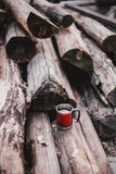 Red cup with tea and lemon on a wooden log Stock Images