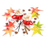 Red cups drink spices Flat lay decoration autumn leaves. Red cups hot drink with spices on white background. Flat lay decoration autumn leaves stock images
