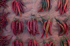 Red Curly Chilli. Bunch of red curly chilli that sell in traditional market, Indonesia stock image