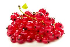 Red currant. Pile of red currants isolated over white background macro shot (isolated path Royalty Free Stock Photo