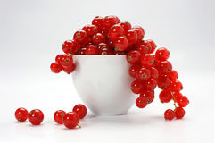 Red currant. White bowl with red currant Stock Images