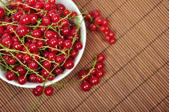 Red currant. In ceramic bowl on wooden background Royalty Free Stock Photo