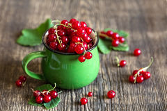 Free Red Currant Royalty Free Stock Image - 42284756