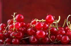 Red currant. Background, placed in a handmade wooden chest box royalty free stock photography