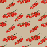 Red currant on beige background. Watercolor hand made. Seamless colorful pattern Stock Images