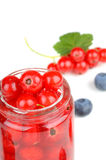 Red currant berries Royalty Free Stock Photography