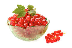 Red currant berries in green glass bowl on white Stock Photos