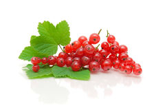 Red currant berries and green leaves on a white background with Royalty Free Stock Photo