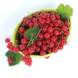 Red currant berries in a green vase Stock Photography