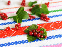 Red currant berries on a leaf. Royalty Free Stock Photography