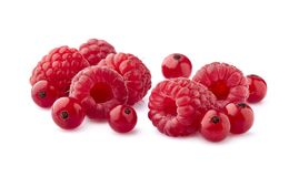 Red currant berries with raspberry on White Background. Mix berries stock photo