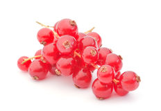 Red currant berry. Closeup on white background stock photos
