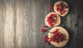 Red currant berry on black wood boards royalty free stock images