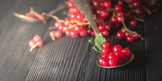 Red currant berry on black wood boards royalty free stock photo