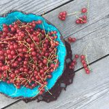 Red currant berry in a blue plate on a gray wooden  background, top view , square format of photo Stock Photography