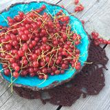 Red currant berry in a blue plate, photo in country style Royalty Free Stock Images