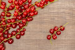 Fresh raw red currant berry on brown wood. Red currant berry one string is separated in the right corner flatlay on brown wood stock photos
