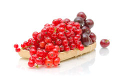 Red currant and black cherry on a white background Stock Photo